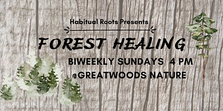 Forest Healing Adventure & Meditation tickets