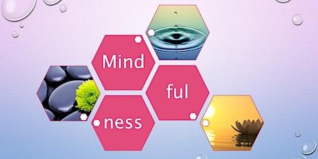 Webinar 14.  Mindfulness tickets