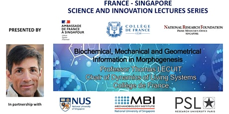 Biochemical, Mechanical and Geometrical Information in Morphogenesis tickets