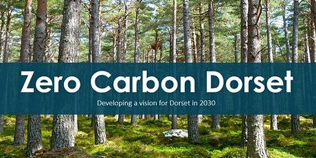 Zero Carbon Dorset; developing a vision for education tickets
