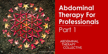 Abdominal Therapy for Professionals 1 tickets