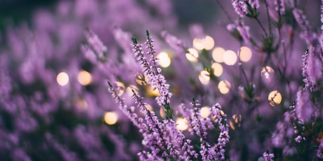Emotions and Essential Oils - Workshop tickets