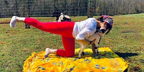 Baby Goat Yoga tickets