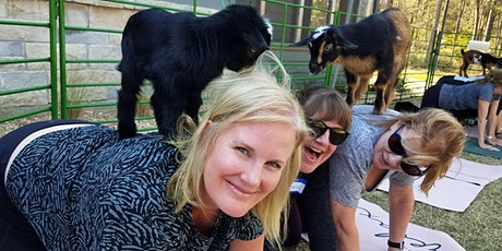Goat Yoga Texas - Baby Goats are HERE! - Sun, May 16 @ 10am tickets