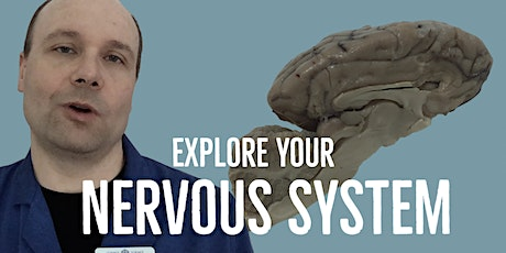Explore Your Nervous System - Virtual Spring Break tickets