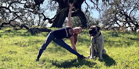 Pop-up Outdoor Yoga with Lisa Ellisen tickets