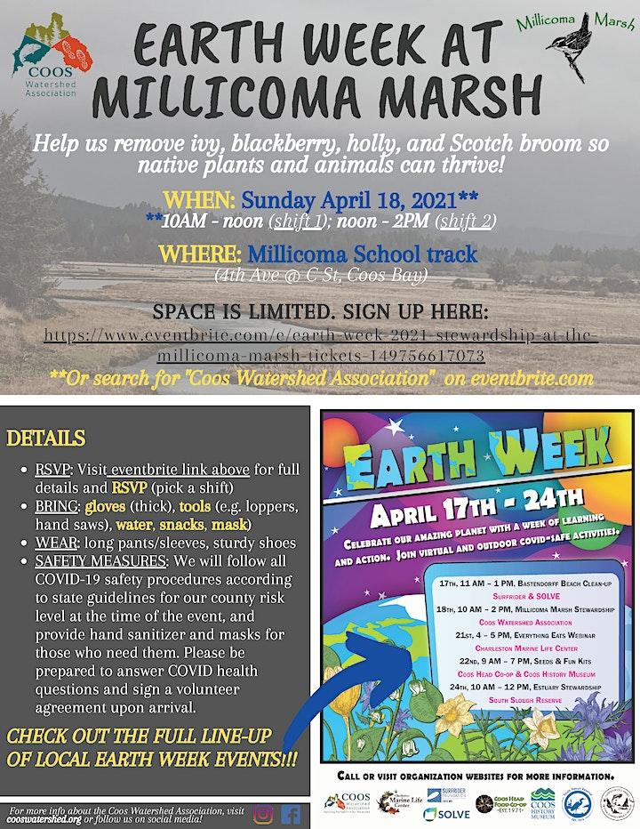 Earth Week 2021: Stewardship at the Millicoma Marsh image