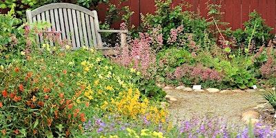 Creating Year-Round Interest in California Native Garden