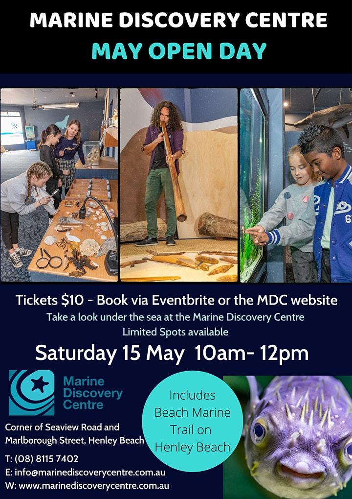 Marine Discovery Centre Open Day - May image