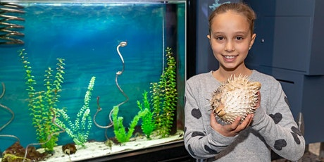 Marine Discovery Centre Open Day - May tickets