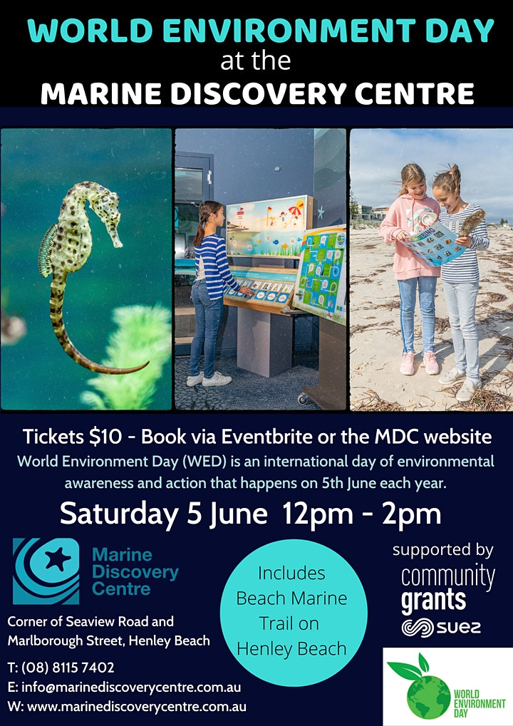 World Environment Day at the Marine Discovery Centre image