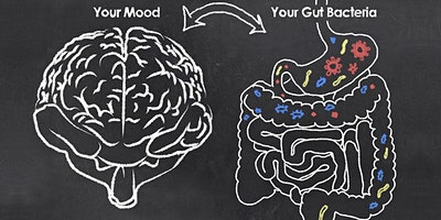 Food for Thought: The Gut-Brain Connection