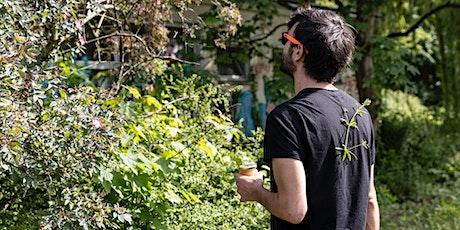 Kräuter Sammeln in Berlins Wäldern und Parks / Stadtökologie billets