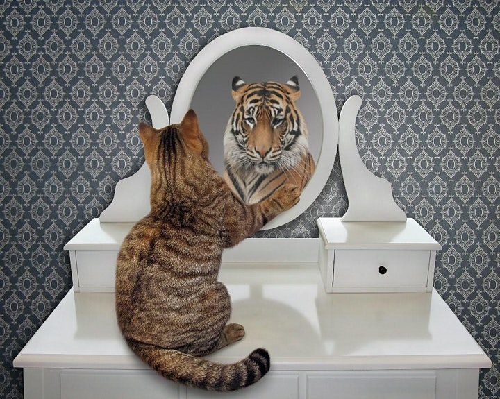 Finde deine Stärken: Bild