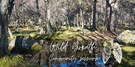 WILD BREATH COMMUNITY SESSIONS tickets
