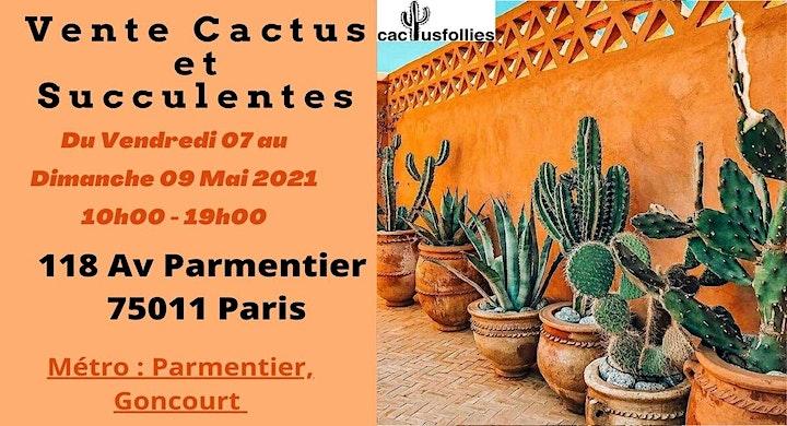 Image pour Vente de Cactus et Succulentes Paris 11e