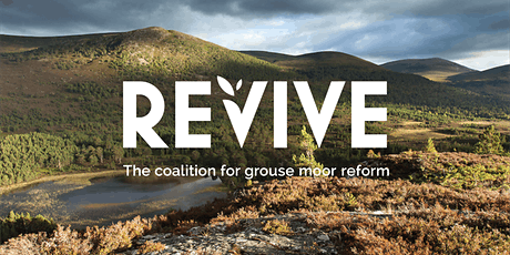 REVIVE national election hustings bilhetes