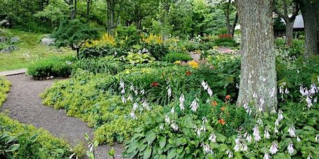 """Online Gardening Webinar - """"Fusion Gardening"""" tickets"""