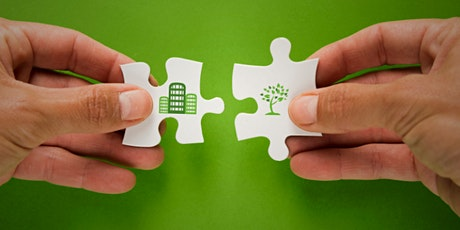 Networking: Construyendo Relaciones para Promover el Consumo Consciente ingressos