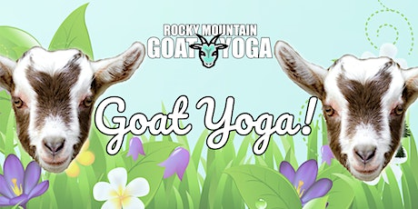 Goat Yoga - May 15th  (RMGY Studio) tickets