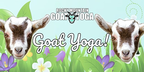 Goat Yoga - May 22nd  (RMGY Studio) tickets