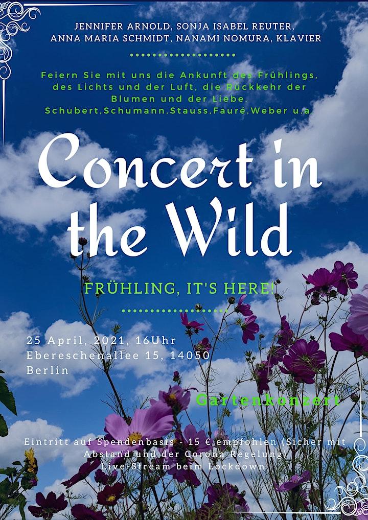 Concert in the Wild #4: Bild
