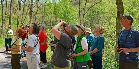 Mountaineer Audubon Spring Bird Walks tickets
