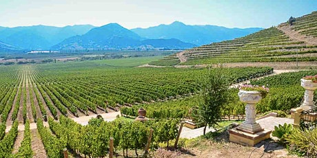 Wine Class with Jose! Wines from Chile -Seriously Delicious | 4/21 @ 7pm tickets