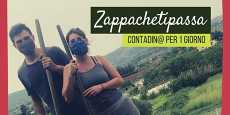 Zappa Che Ti Passa biglietti