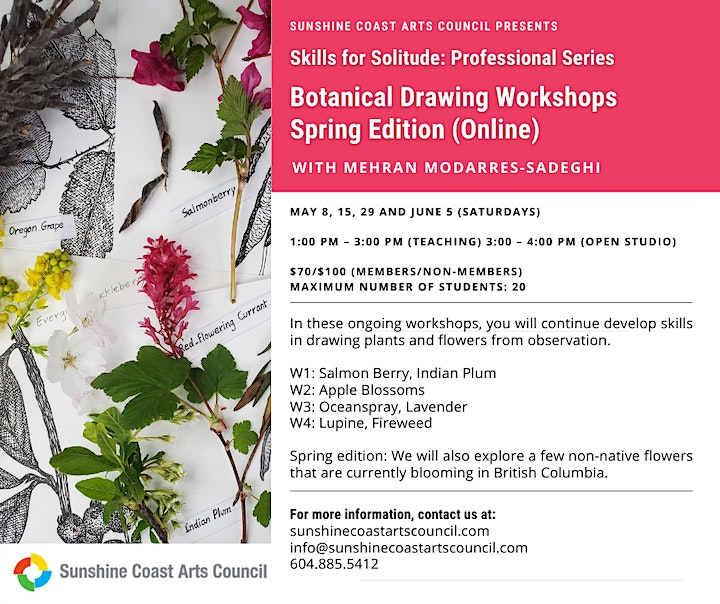 Professional Series Botanical Drawing Workshops: Spring Edition (Online) image