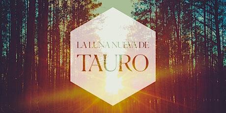 Luna Nueva de Tauro | 12.Abr.21 | 9.00PM entradas