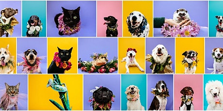Pawtraits 4 a Cause 8 tickets
