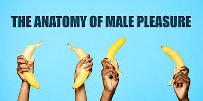 The Anatomy of Male Pleasure