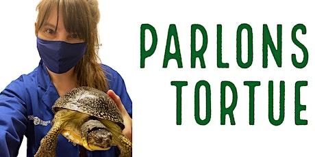 Parlons tortue - Semaine de relâche virtuelle billets