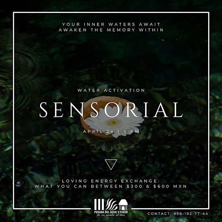 Imagen de Sensorial: Water Activation