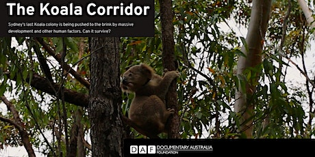 The Koala Corridor film preview at Hazelhurst tickets