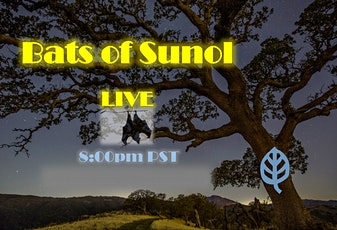 Bats of Sunol: Virtual tickets