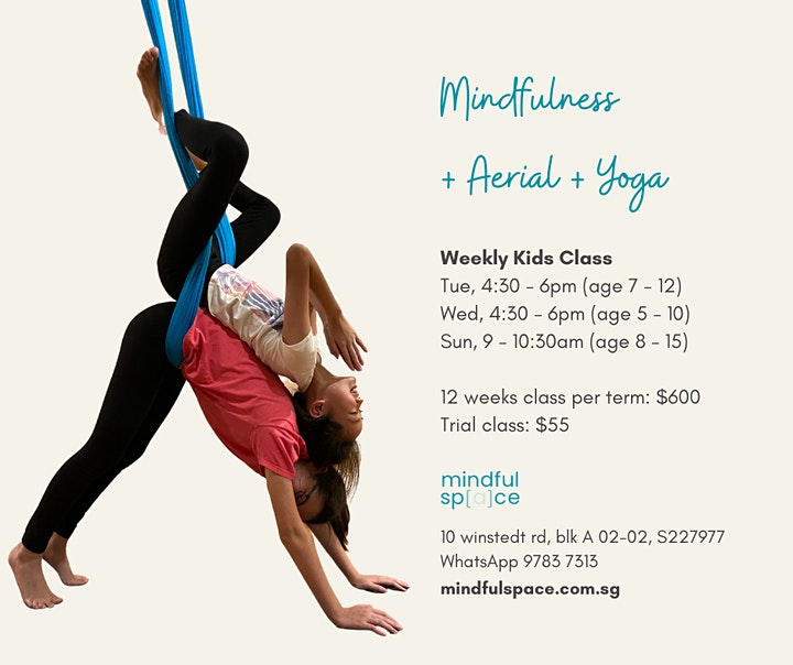 Term 2: Weekly Kids Mindfulness + Yoga + Aerial image