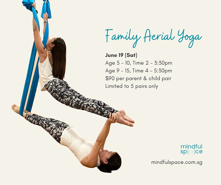 Family Aerial Yoga (Parent & Child) Workshop image