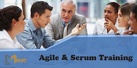 Agile & Scrum 1 Day Virtual Live Training in Melbourne ingressos
