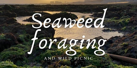 Seaweed forage + wild picnic tickets