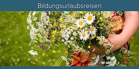 Sommer auf Spiekeroog: Leben und Arbeiten im Einklang/ Bildungsurlaub Tickets