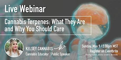 Cannabis Terpenes Live Webinar billets