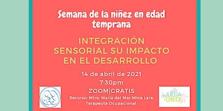 Integración sensorial su impacto en el desarrollo entradas