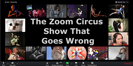 The Zoom Circus Show that Goes Wrong tickets