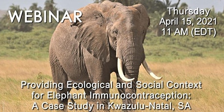 Free Webinar Addresses Fertility Control and African Elephants tickets