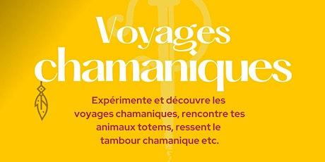 Voyages chamaniques - Animaux totem billets