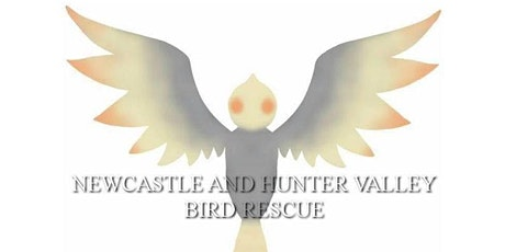 Newcastle and Hunter Valley Bird Rescue: Parrot Play Date! tickets