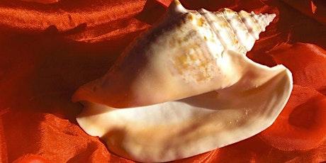 Die 9 Juwelen der Lust - Die kardinalen Yoni-Typen auf dem Medizinrad Tickets