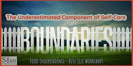 Food Independence - Bite Size Workshops - Boundaries tickets